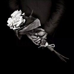 benoit courti, flori, maini, valentine's day